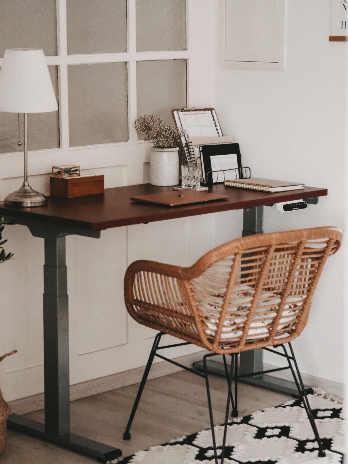 Homeoffice FlexiSpot Desk