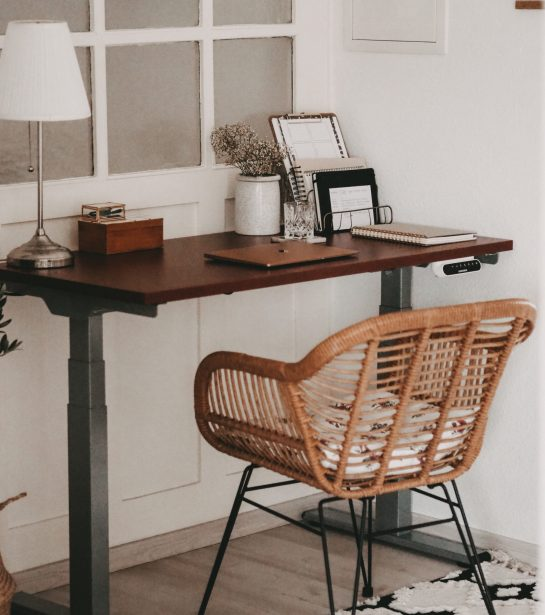 Homeoffice FlexiSpot Desk